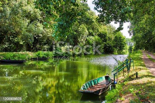 the natural Poitevin marsh on France