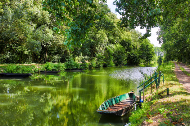 the Poitevin marsh the natural Poitevin marsh on France ile de france stock pictures, royalty-free photos & images