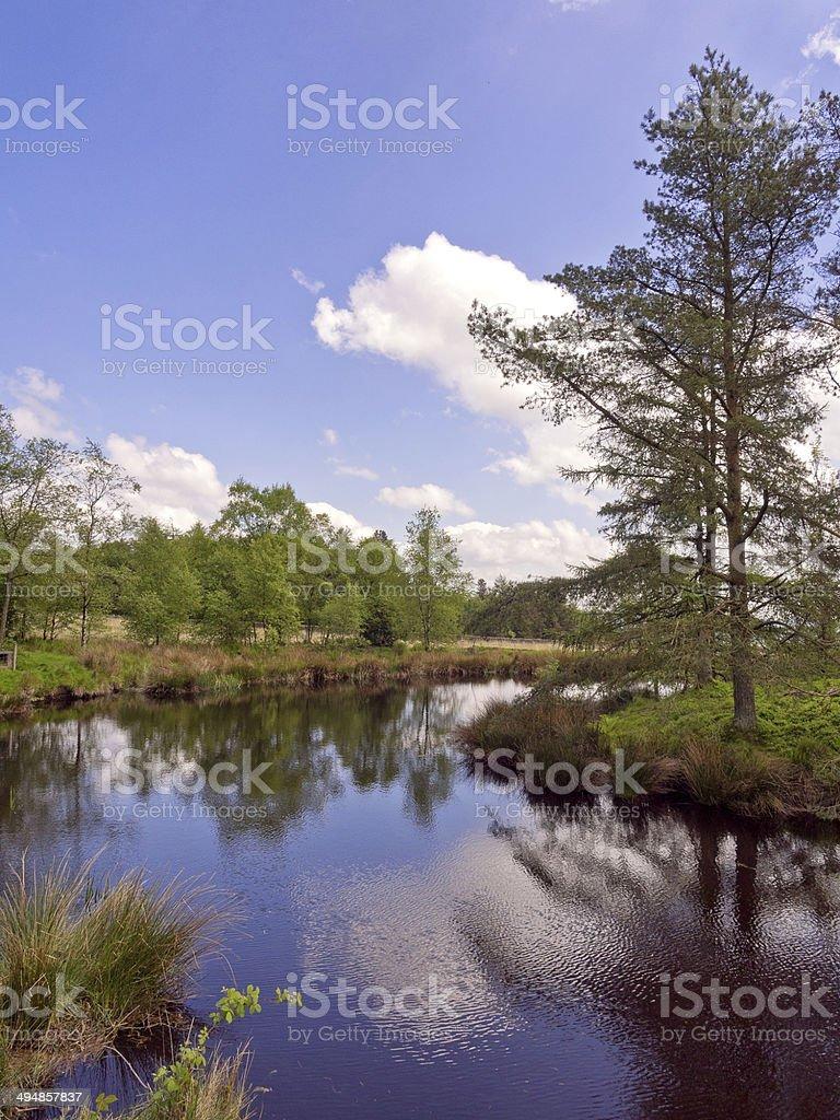 The pond at beacon Fel stock photo