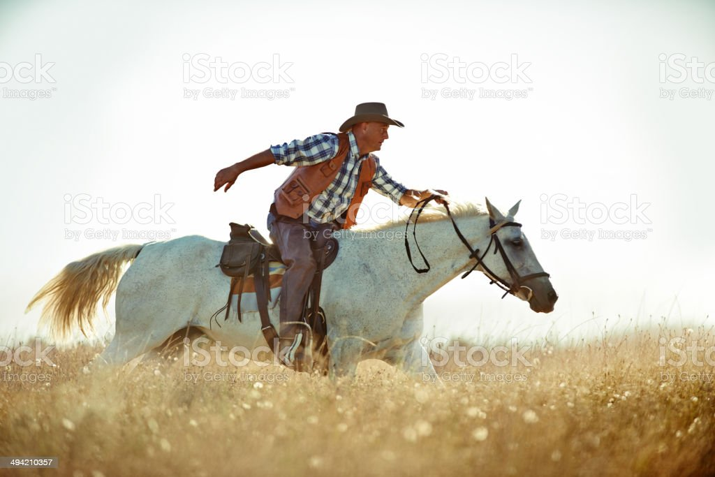 The pony express! stock photo