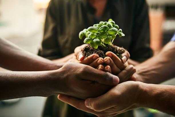 The potential for growth is great when we stand together stock photo
