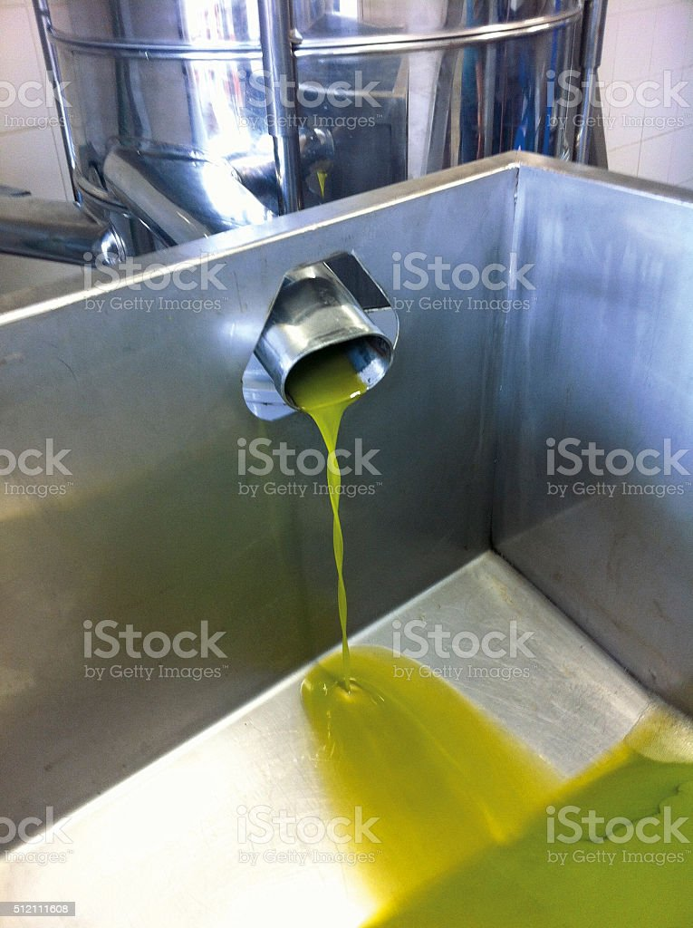 The pressing of the olives stock photo