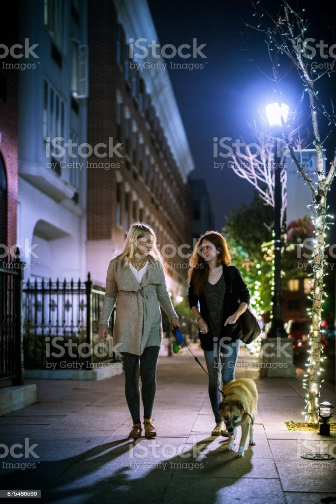 The pretty Caucasian blonde pregnant woman together with her teenager sister walking the dog on the street at the night stock photo