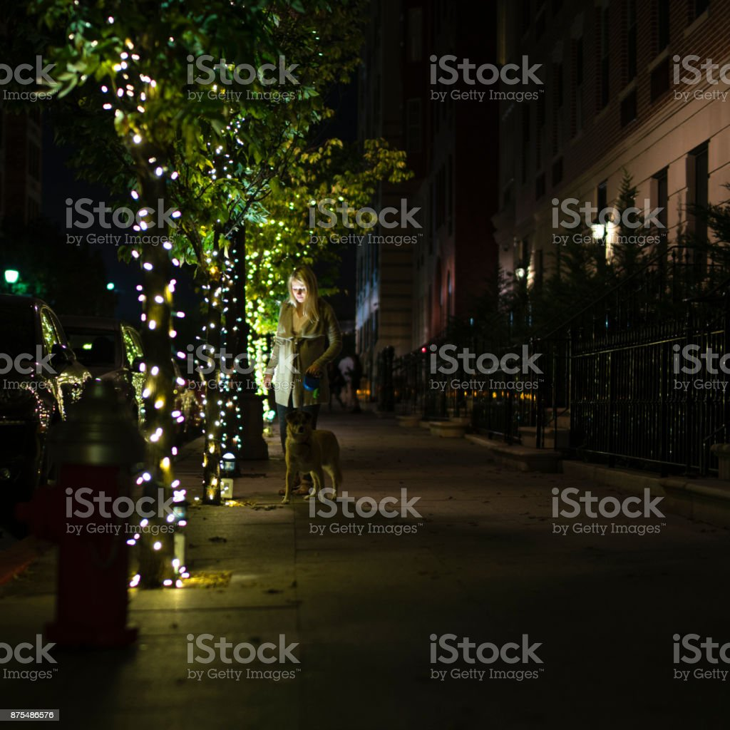 The pretty Caucasian blonde pregnant woman walking the dog on the street at the night stock photo