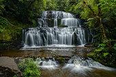 the Catlins Region, South Island, New Zealand.