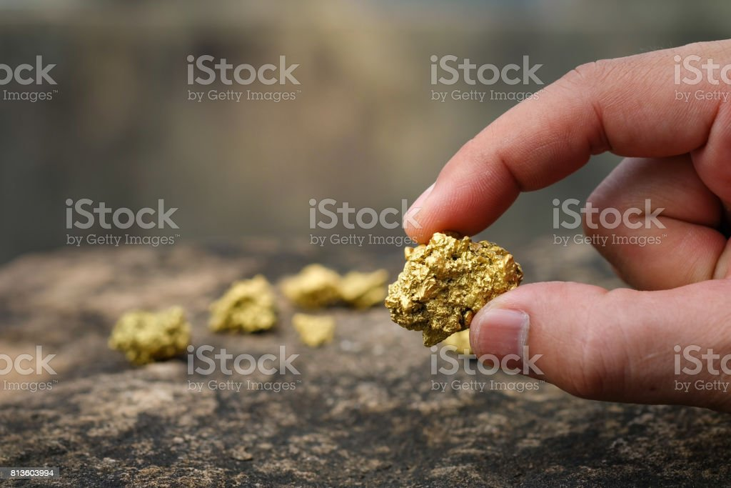 The pure gold ore found in the mine is in the hands of men. stock photo
