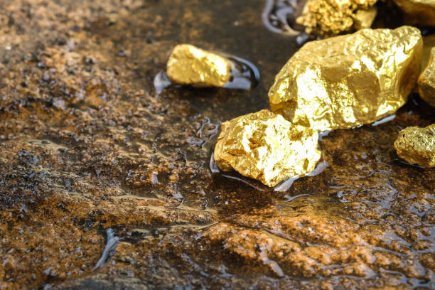 the pure gold ore found in the mine on a stone floor - gold mine stock photos and pictures