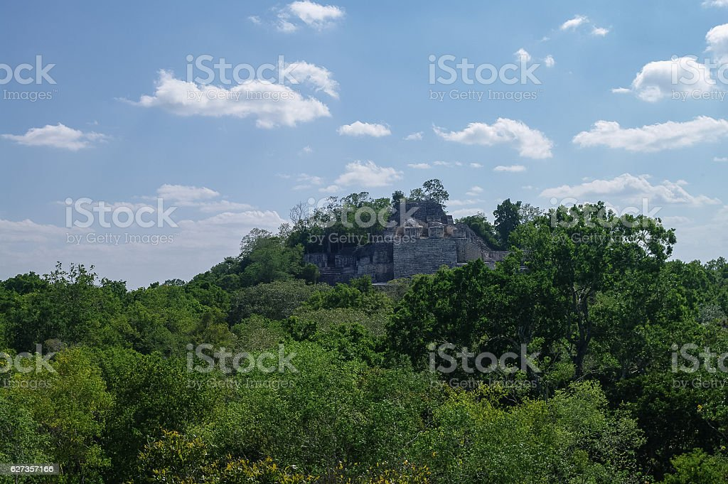 The pyramid in the complex  Calakmul stock photo