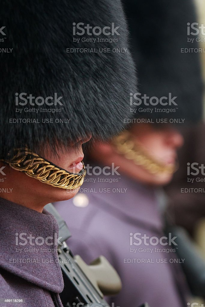 The Queen's Guard stock photo
