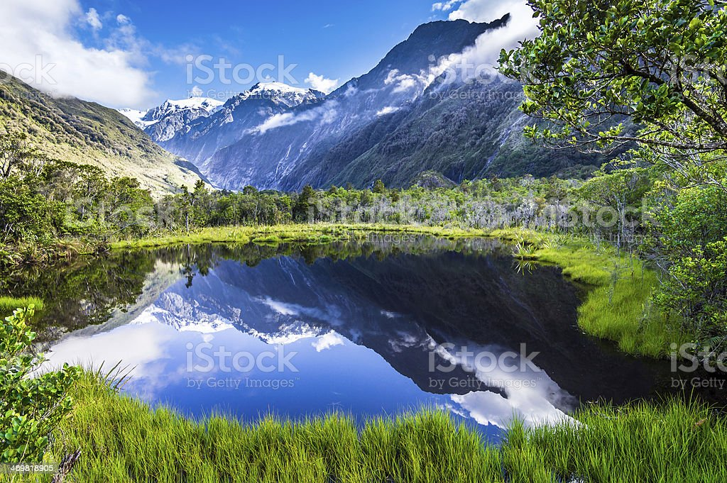 The quiet lake royalty-free stock photo