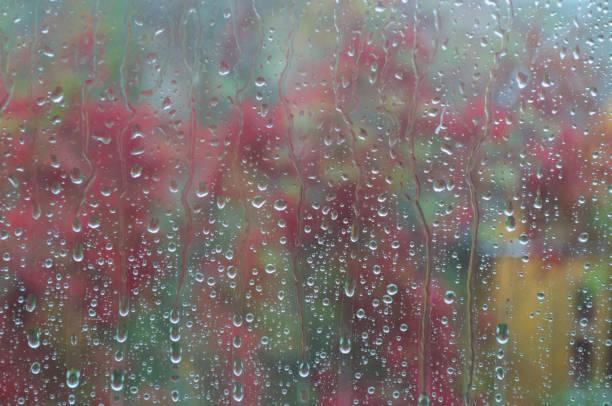The rain stock photo
