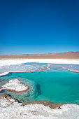 The raw landscape of the Atacama Desert, northern Chile