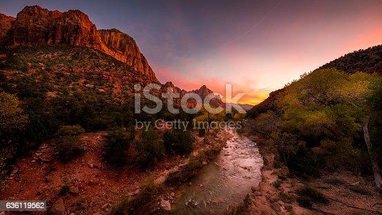 Park at sunset. A beautiful pink sky. Zion National Park, Utah, USA