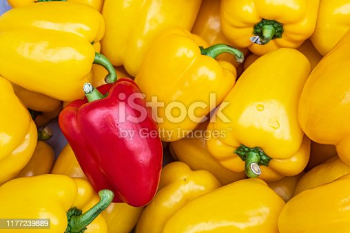 Overhead image of a red bell pepper among yellow bell peppers