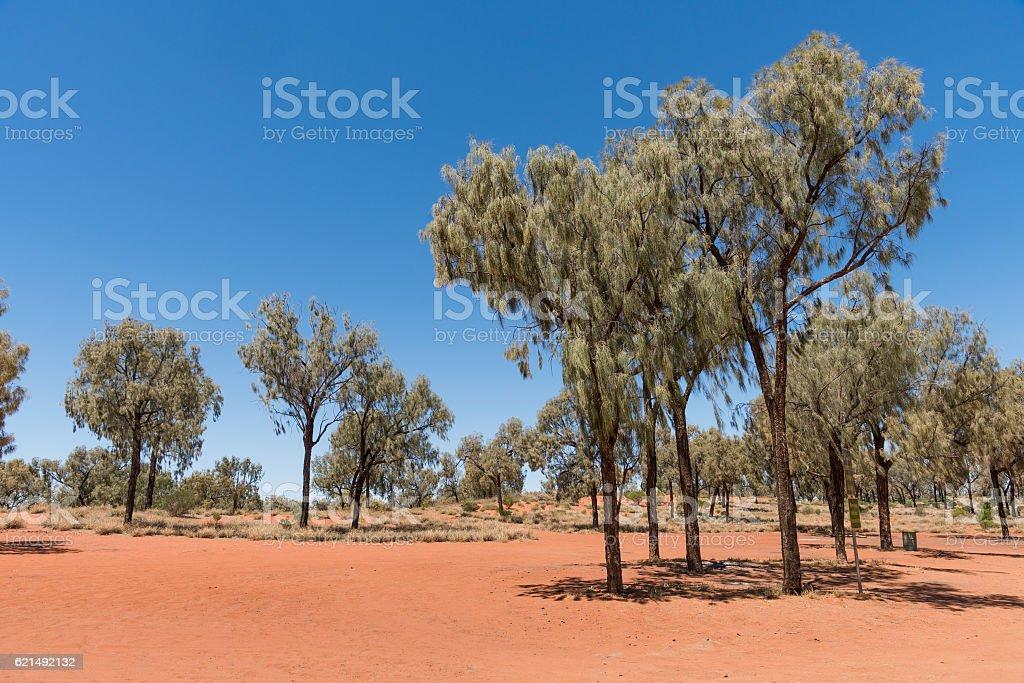 The Red Centre, Australia photo libre de droits