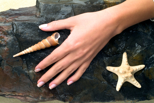 The refined beautiful female fingers with manicure