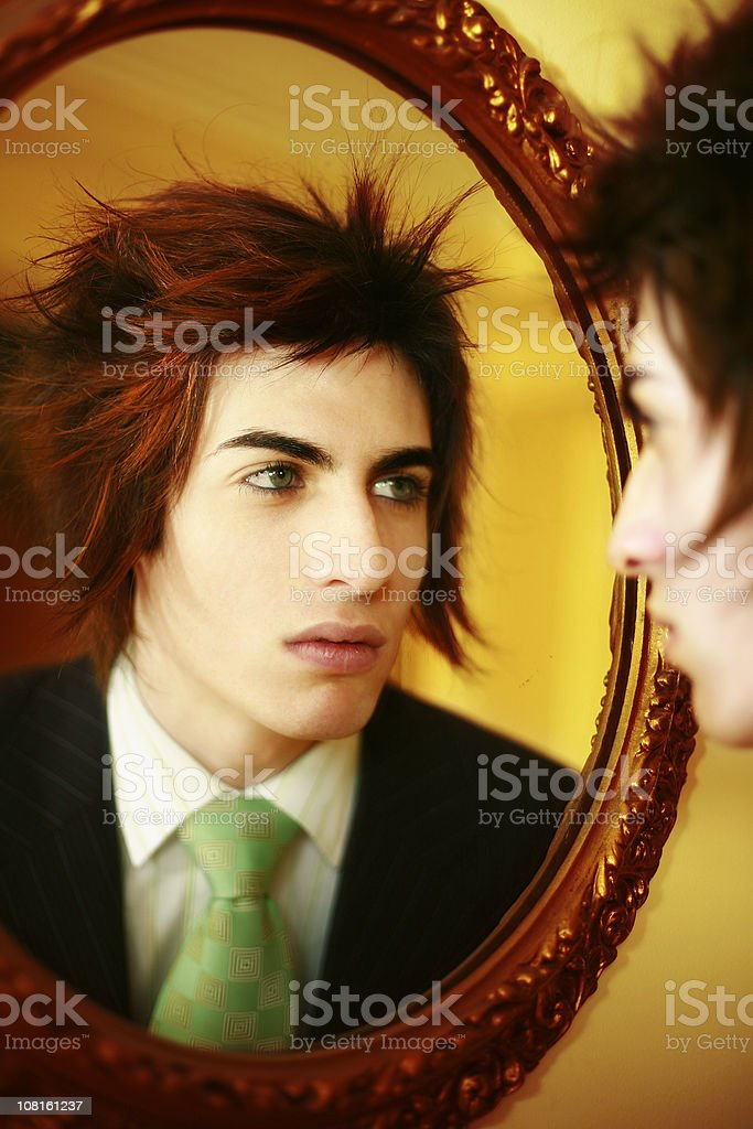 The Reflection royalty-free stock photo