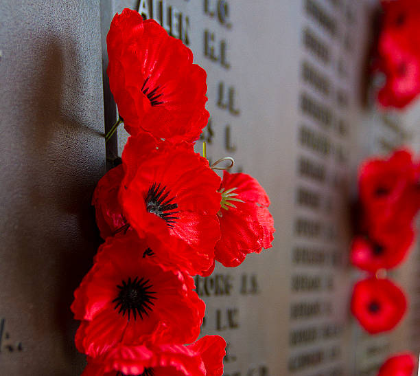 the remembrance poppy - war memorial stock pictures, royalty-free photos & images