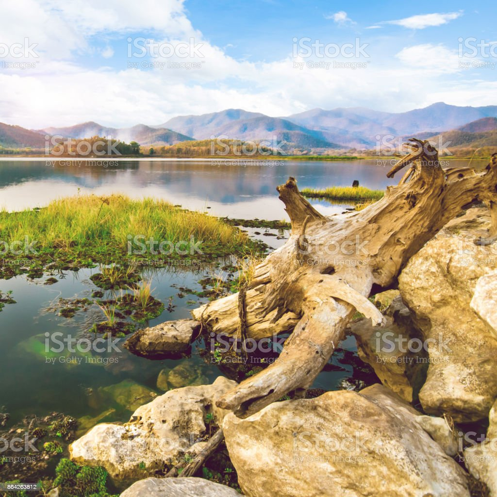 The reservoir contains the log and the beautiful blue sky royalty-free stock photo