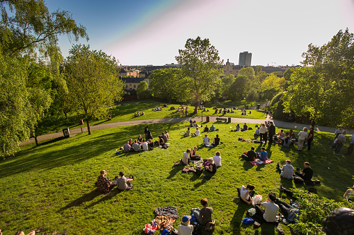 the rest of the people in Sweden are in Stockholm, center city, evening, green grass in the Park, picnic