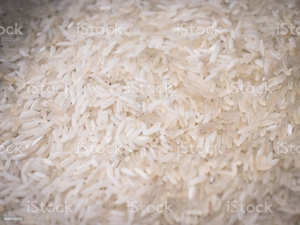 the rice grains. closeup stock photo