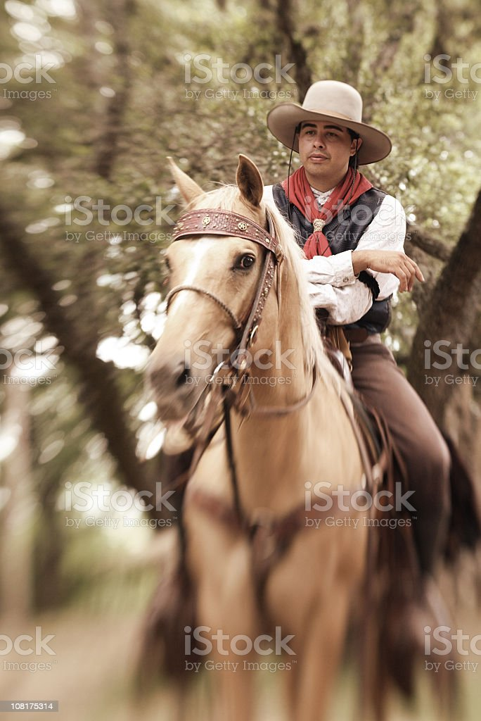 The Rider and his Horse royalty-free stock photo