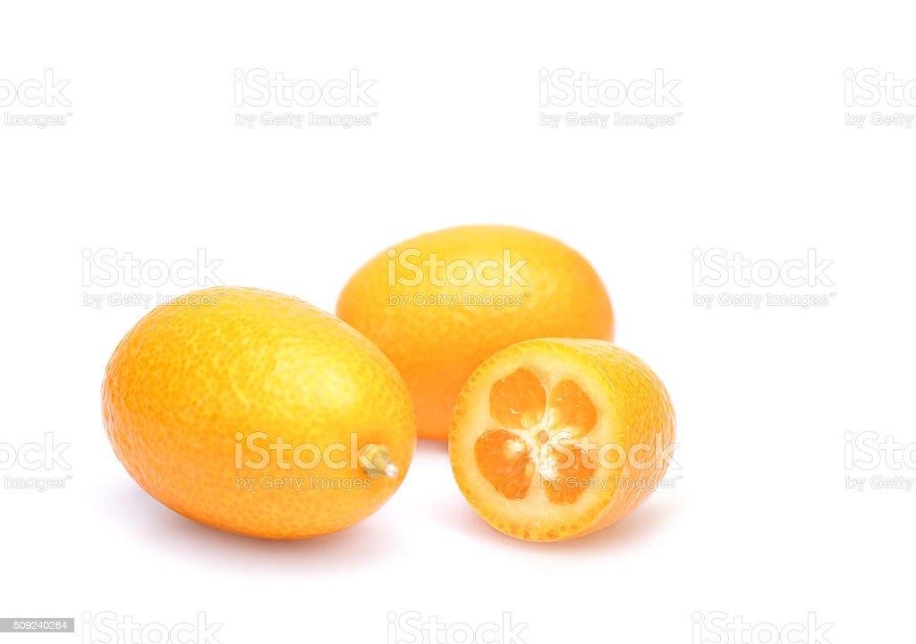 the ripe kumquat stock photo