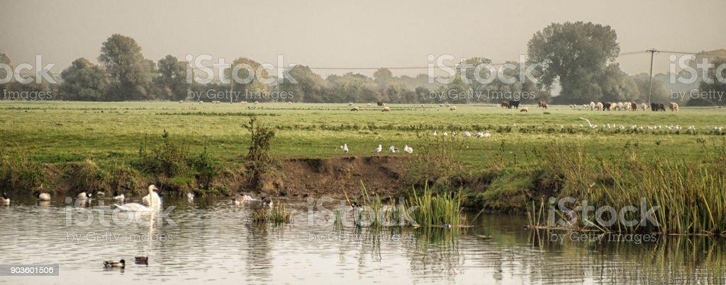 O rio Ouse grande - foto de acervo