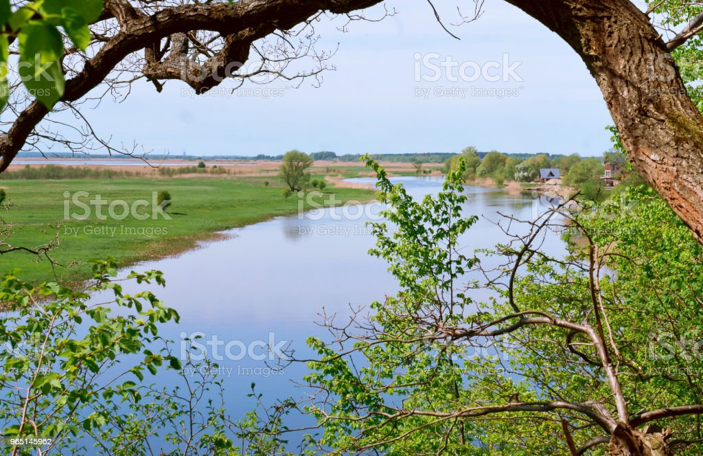 the river in the distance, the river landscape and the sky through the trees, a winding blue river and green grass royalty-free stock photo