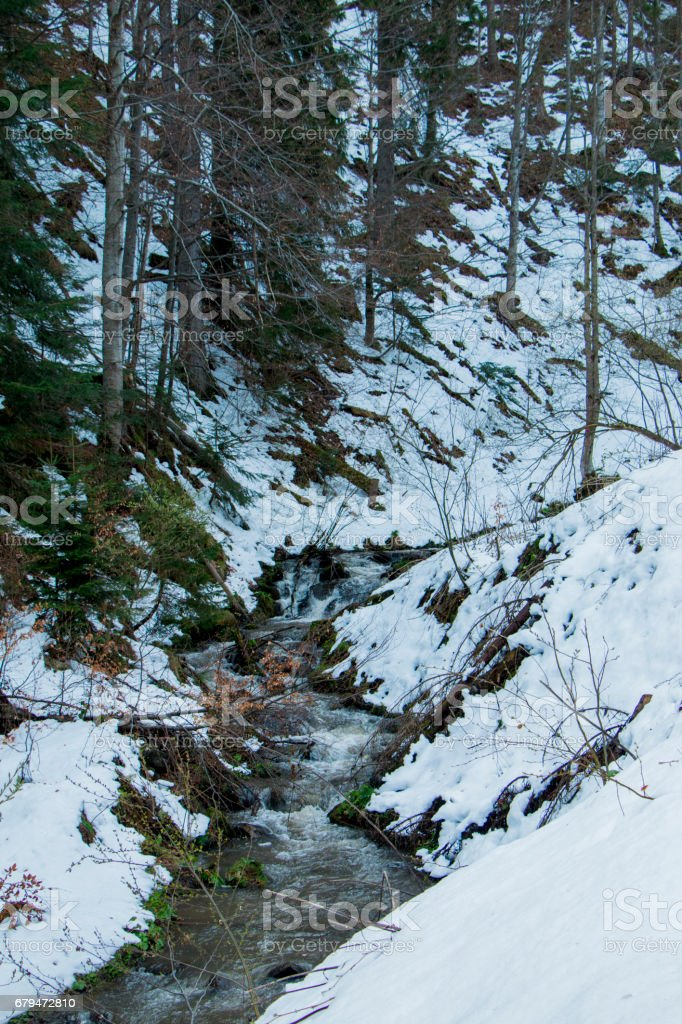 The river in the mountains 免版稅 stock photo