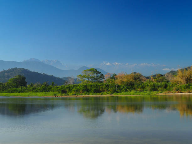 The river of Palomino and the Colombian Andes The river of Palomino and the Colombian Andes palomino stock pictures, royalty-free photos & images