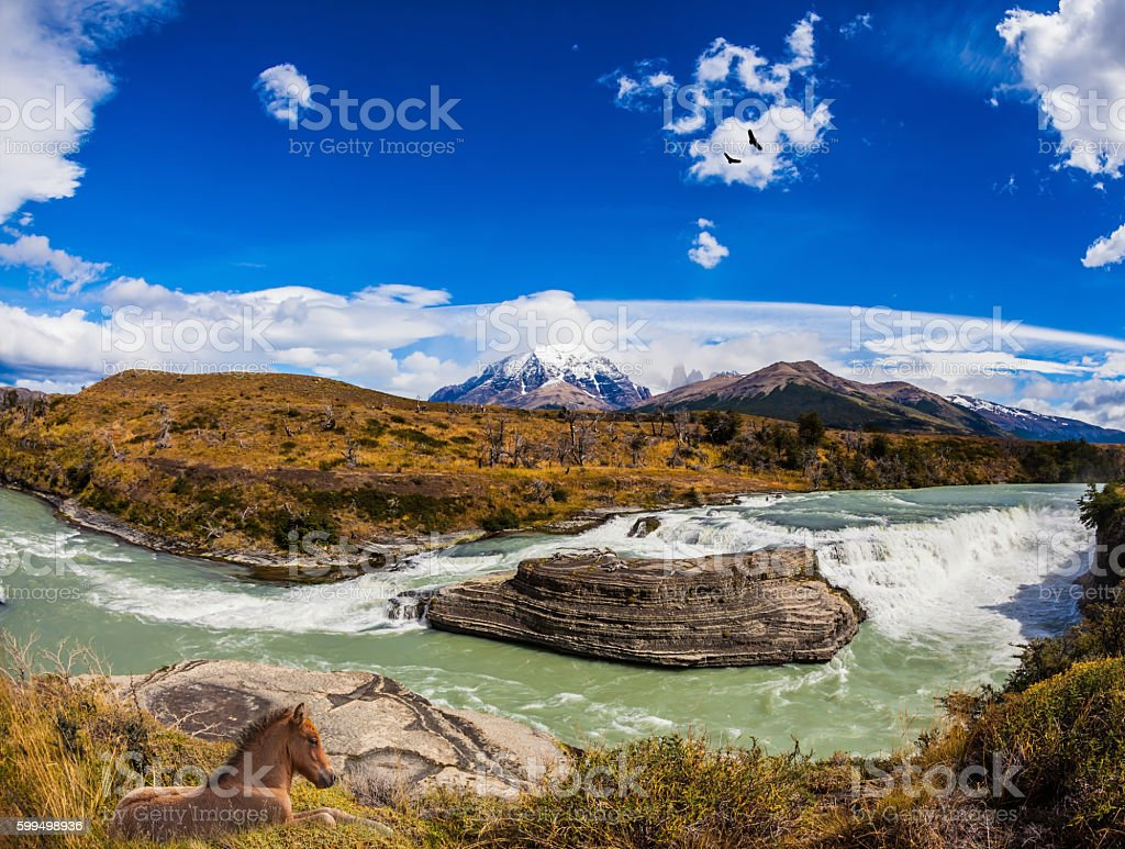 The river Paine stock photo