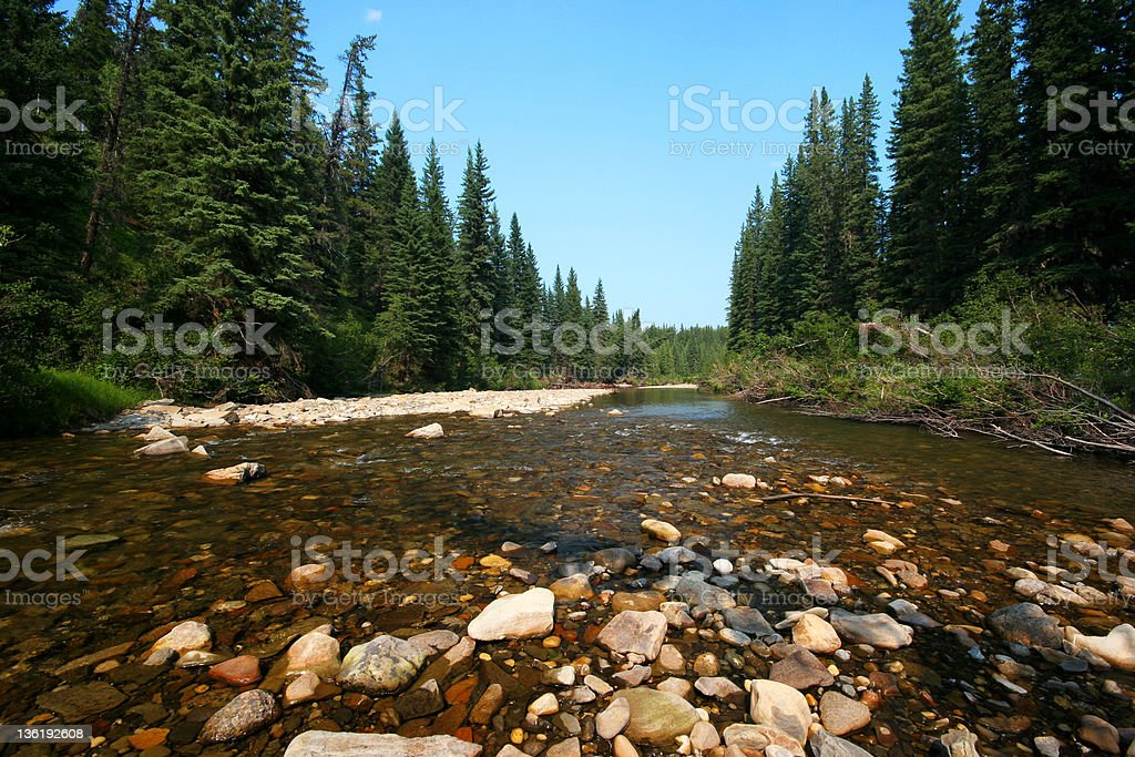 The River (Series-one) royalty-free stock photo