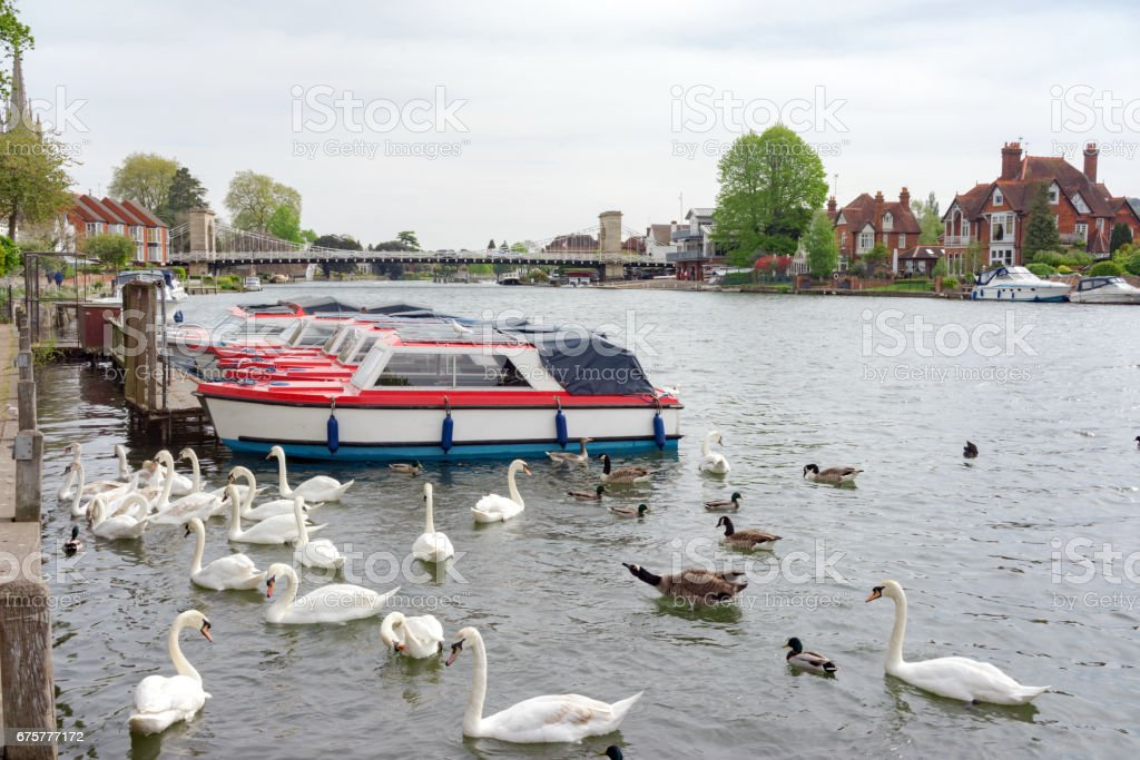 The River Thames at Marlow stock photo