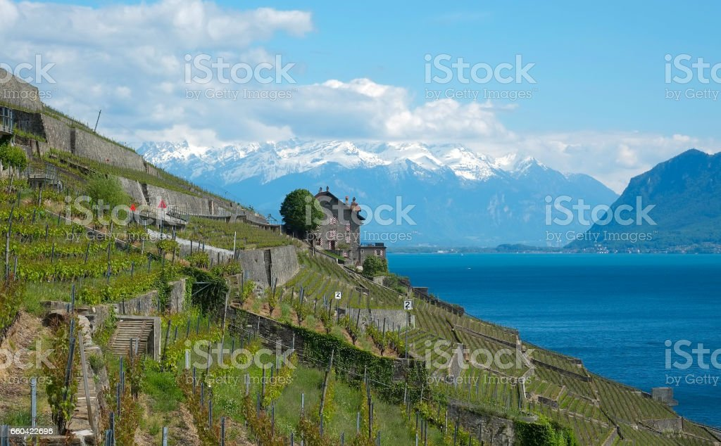 The Riviera Vaudoise and its famous vineyard stock photo