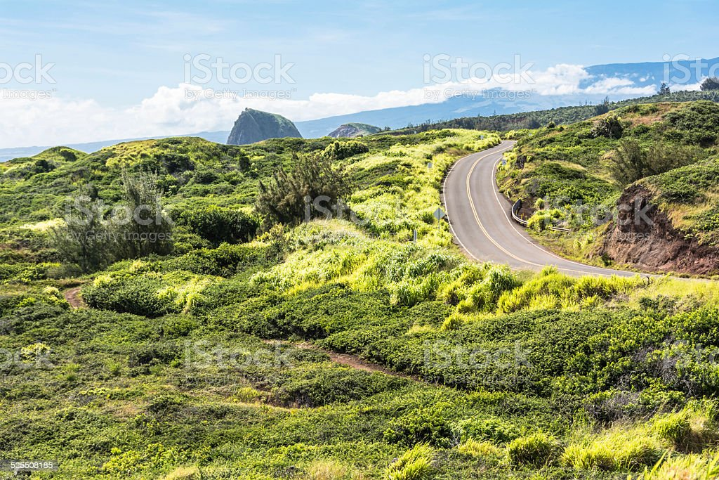 The road in the green, Maui stock photo