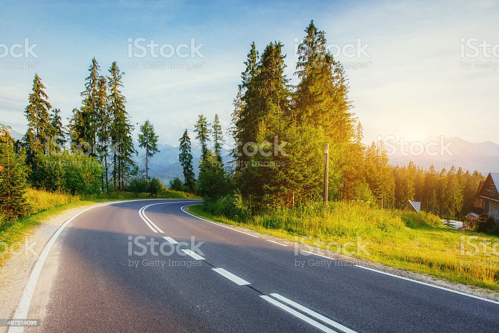 The road leads through the woods . stock photo