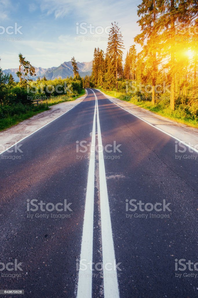 The road leads through the woods to the mountains at sunset. stock photo