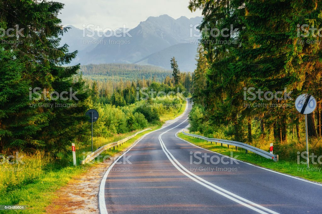 The road leads through the woods to the mountains stock photo