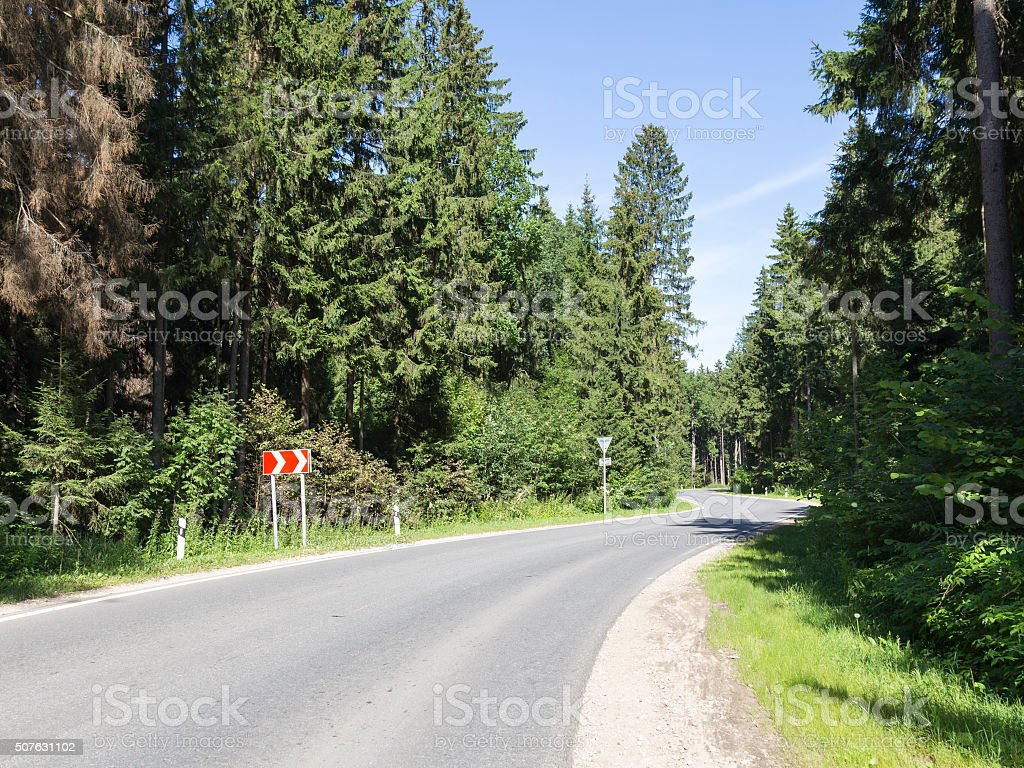 The road passes through the forest stock photo