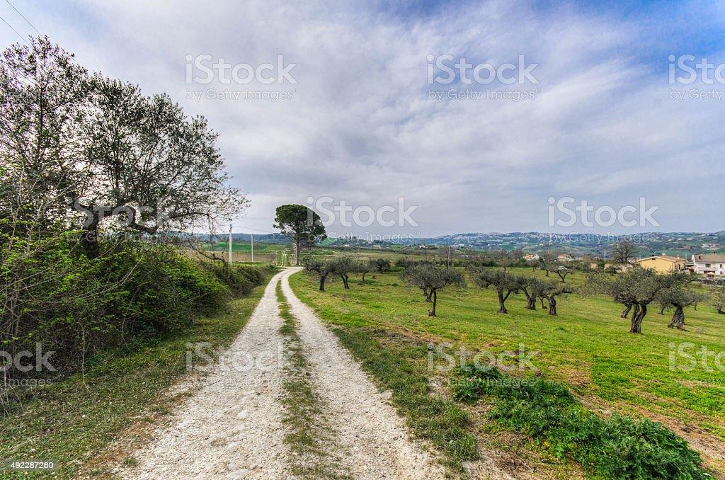the road stock photo