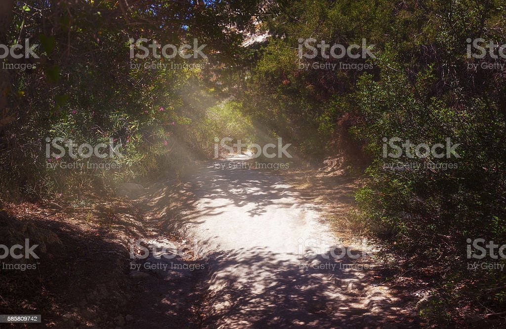 The road to the gorge Avakas. Akamas peninsula. Cyprus. stock photo