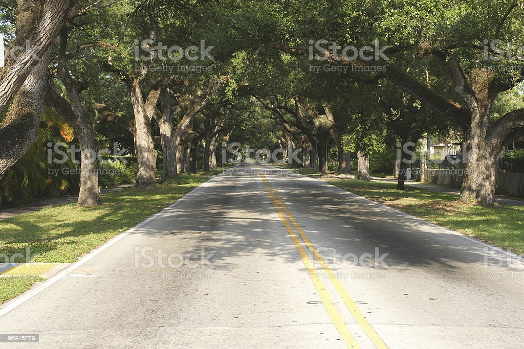 The road's end royalty-free stock photo