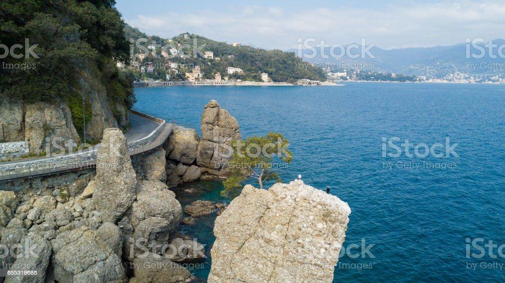 The Rock of Cadrega, maritime pine tree, aerial view, waterfront between Santa Margherita Ligure and Portofino, Paraggi, Liguria, Italy stock photo