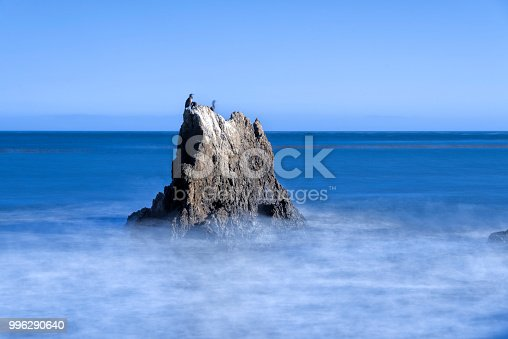 Rock with cormorants sitting on it, surrounded by milky water