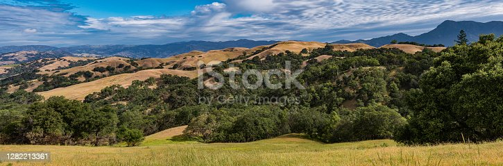 the rolling hills of the Pepperwood Preserve that were burnt in the 2019 major wildfire. Santa Rosa,  Sonoma County, California. Looking toward the East over the grass land, oak trees to the Mayacamas Mountain Range.