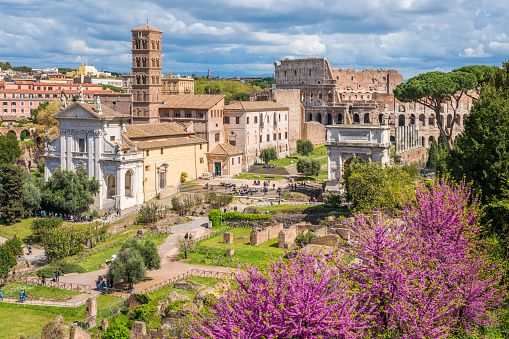 The Roman Forum during spring season in a sunny day. Rome, Italy.