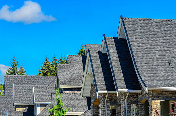 The roof of the house. stock photo