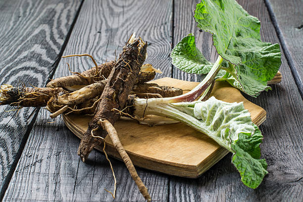 The roots and leaves of burdock on a board stock photo