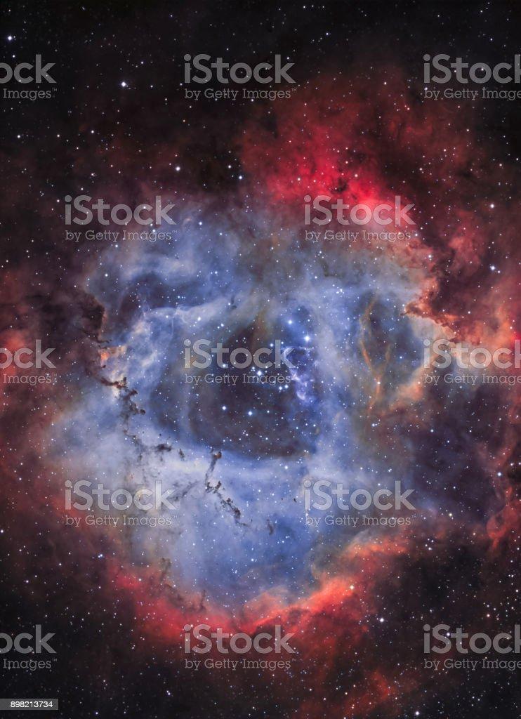 Der Rosettennebel (NGC 2244) in schmalbandiges Licht – Foto